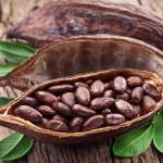 Ester in het spoor van koffie en chocolade