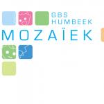 Team Mozaïek