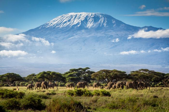 MTB for the Kilimanjaro farmers