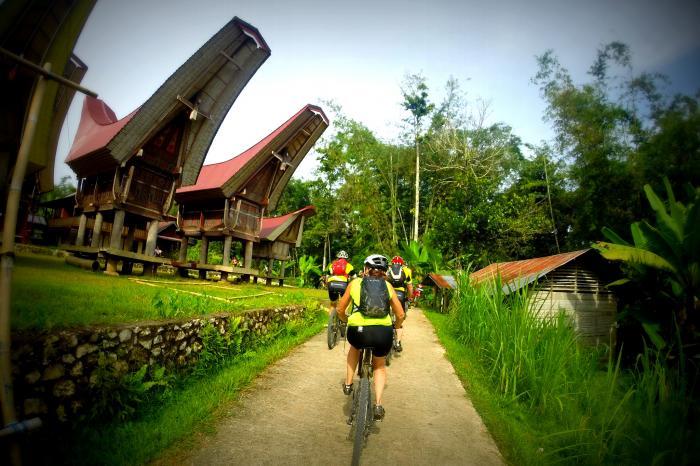 Fietsen voor de boeren in Sulawesi!