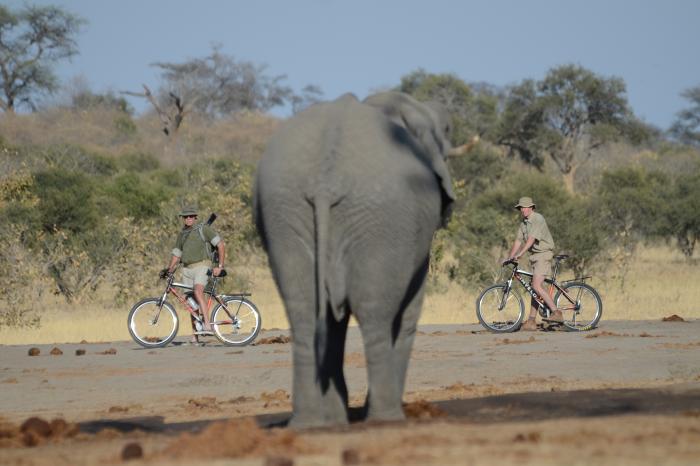 Ik ga geen enkele uitdaging uit de weg! Help mij om de boeren van de Kilimanjaro te steunen!